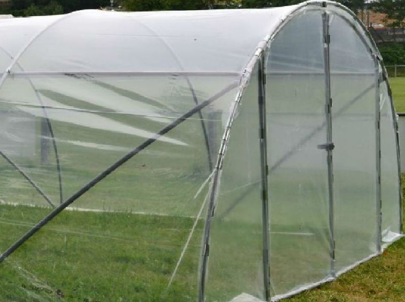 serre de jardin mini 6m porte double www casado en ligne fr. Black Bedroom Furniture Sets. Home Design Ideas
